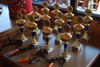 Clubmeisterschaft-Pokale